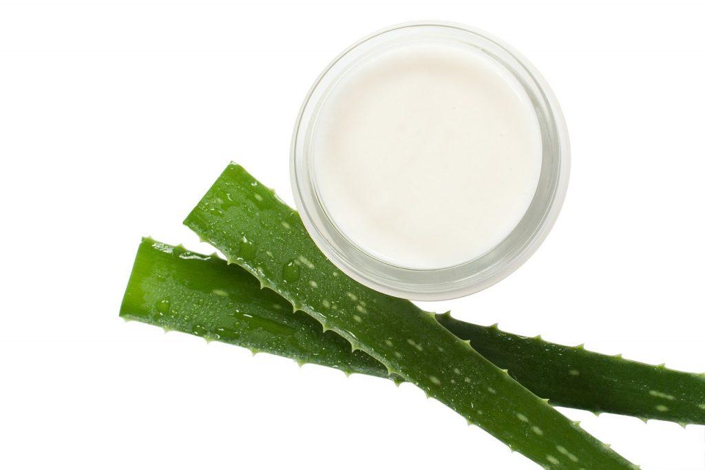 Zelená rastlina aloe vera a v pohári je výťažok z jej listov
