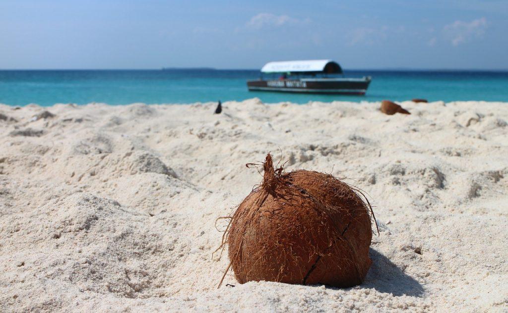 Kokosový orech na pláži